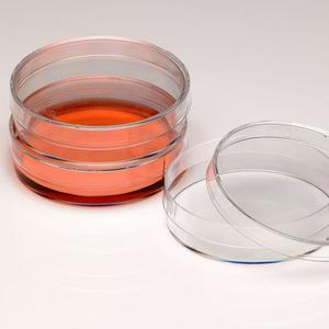 60mm Cell Culture Dish, TC